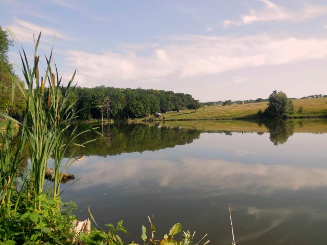 рыбалка на полевском верхнем пруду
