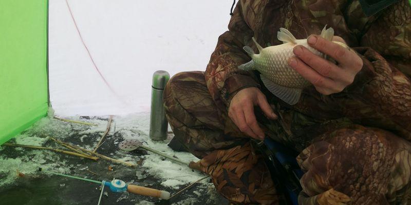 Ловля карася в зимний период (отчет)