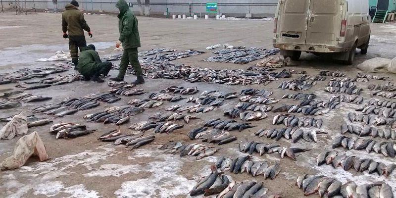 """Астраханские браконьеры открыли """"весеннюю путину"""""""
