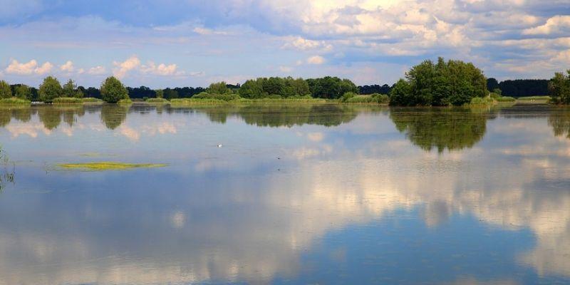 Платные пруды  Подмосковья ждут рыболовов на майские праздники