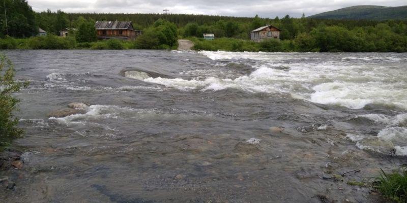 Специалисты России и Финляндии будут совместно исследовать рыбу  трансграничных водах