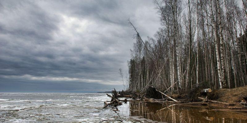 Нерестовый запрет продлится в Ярославской области 2 месяца