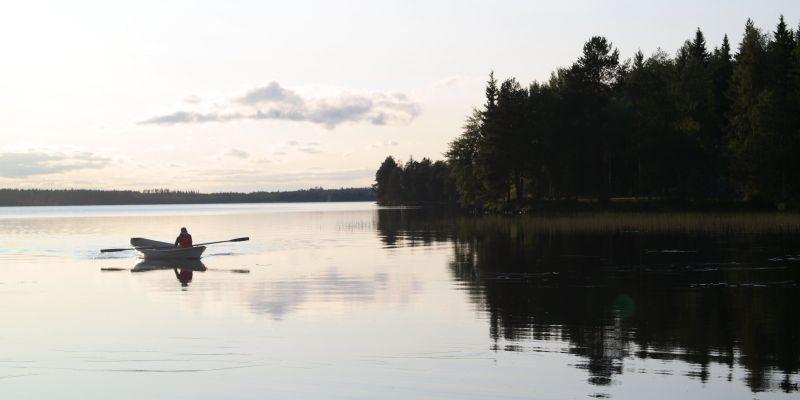 Установлены суточные лимиты в Северном рыбохозяйственном бассейне