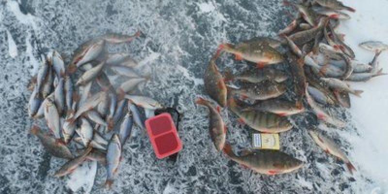 Урал: рыбалка на Аргазях.