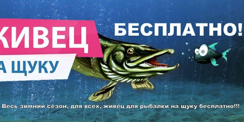 Акция на платной рыбалке в Ихтиолог - Живец для рыбалки на щуку Бесплатно!