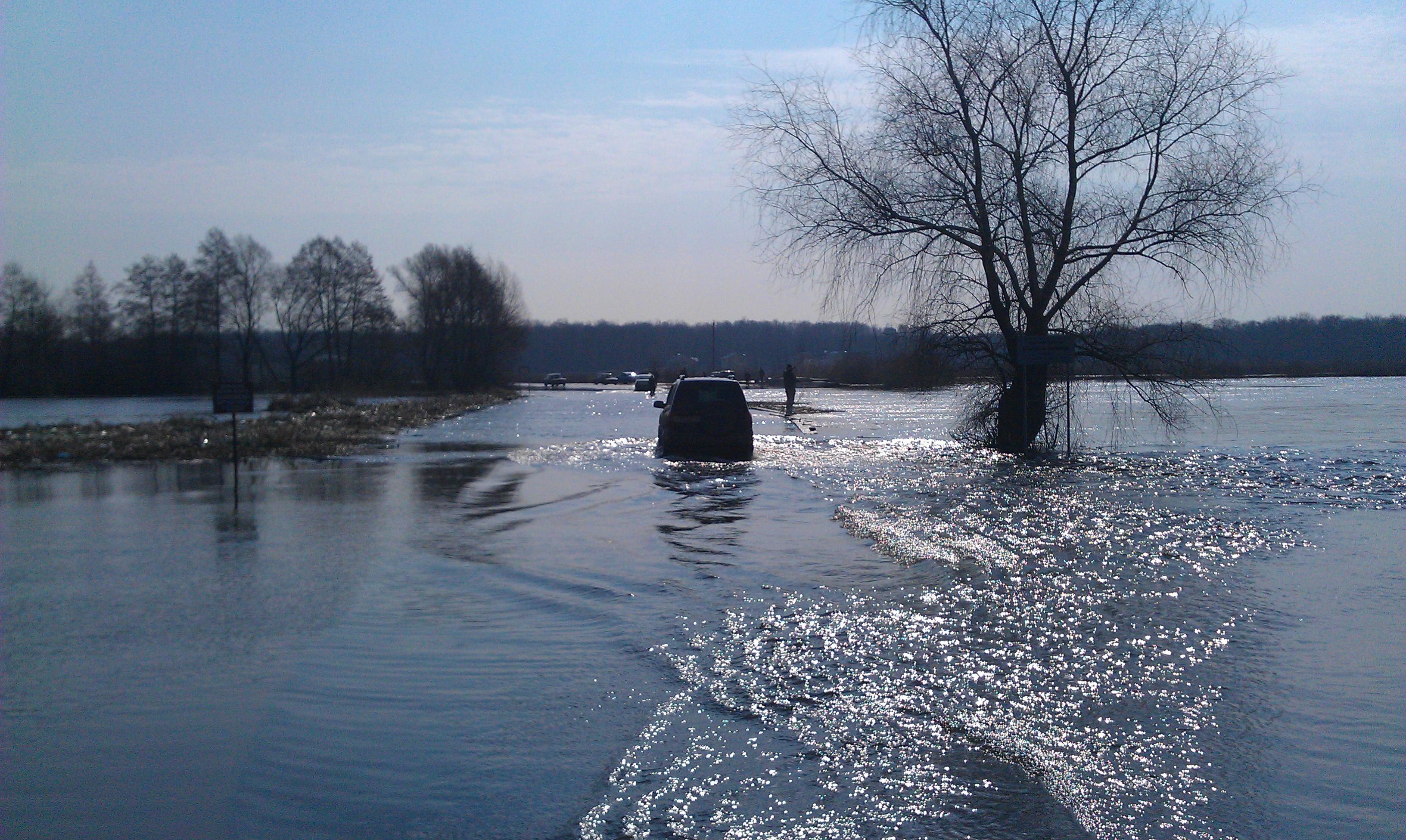 Река Воронеж во время паводка в Рамони, фото паводка