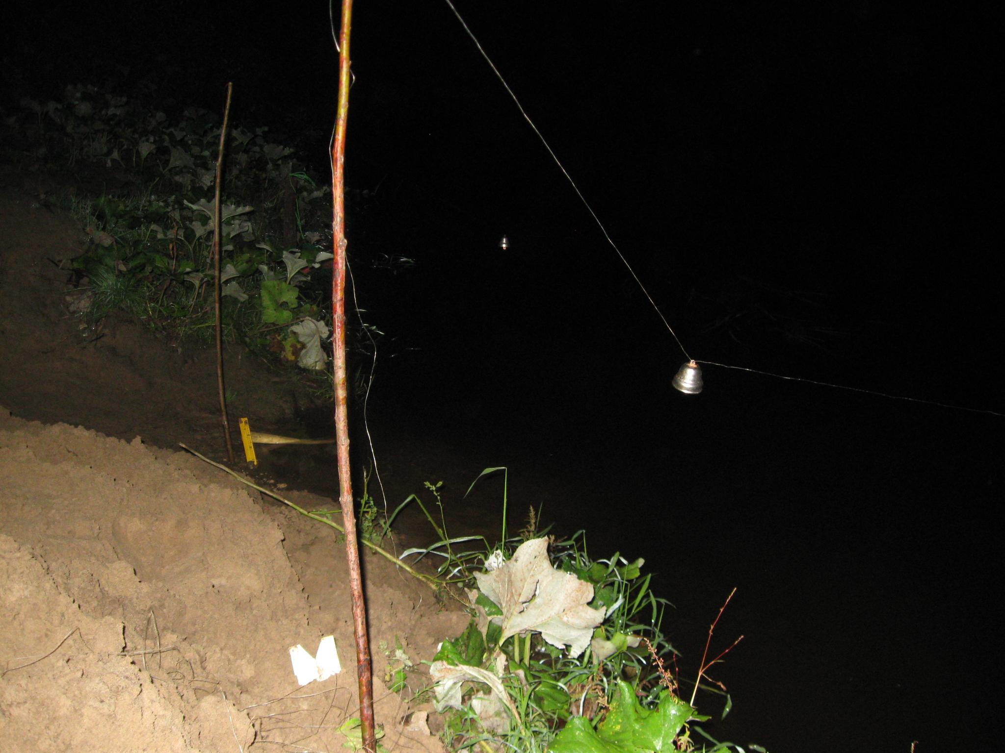 рыбалка на закидушки с колокольчиком