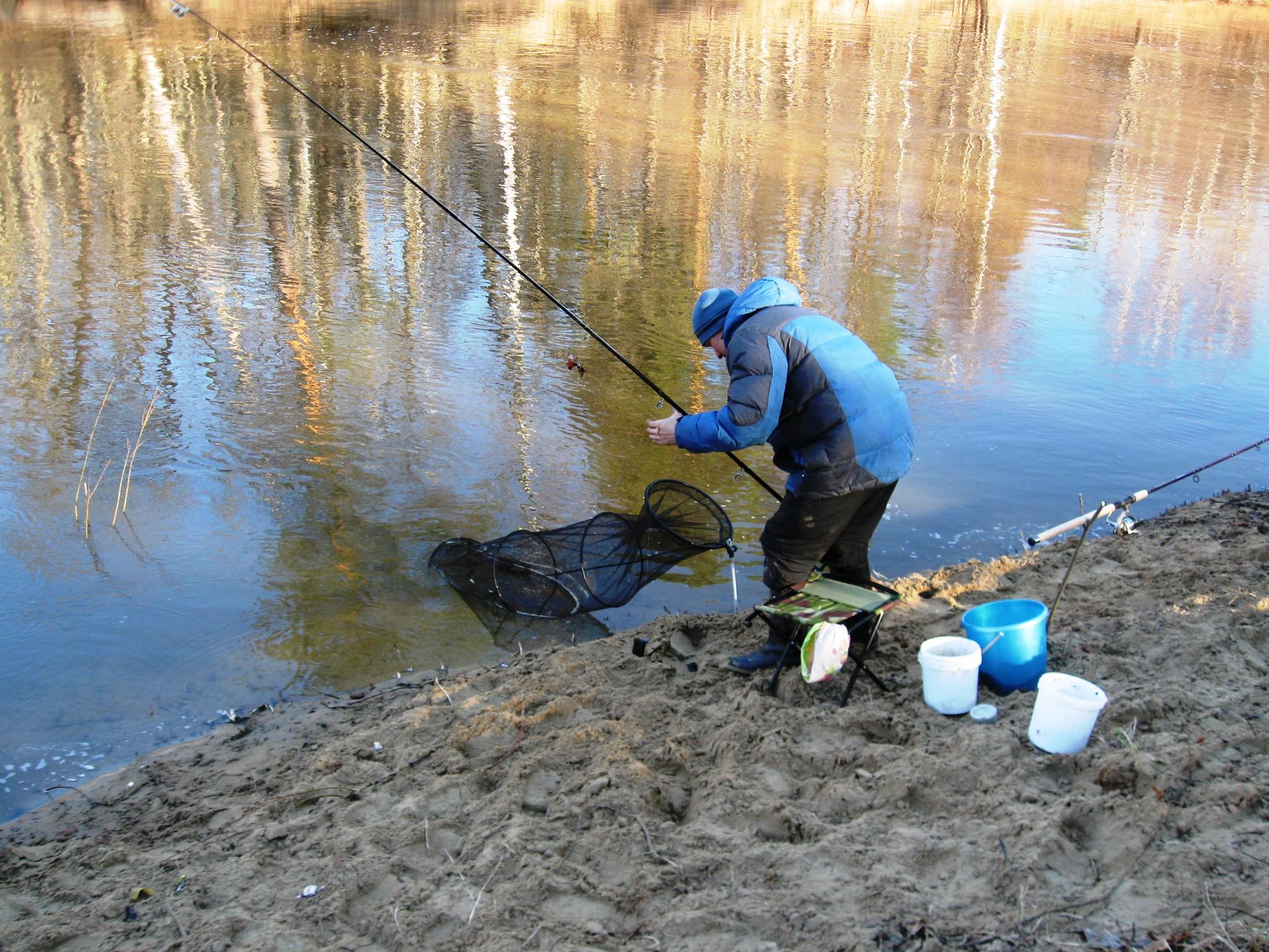 ловим ельца на реке
