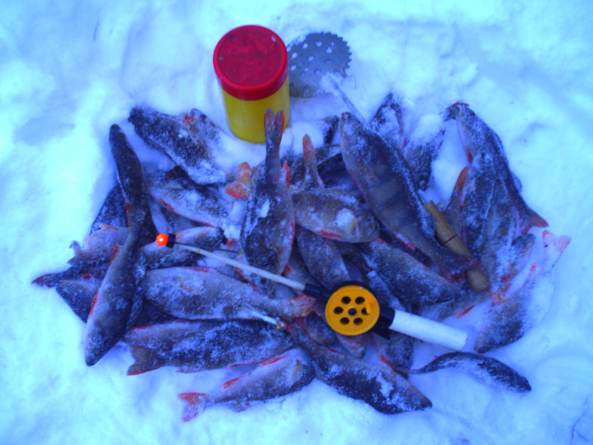 союз рыбаков россии