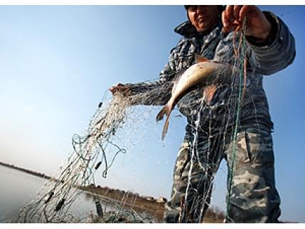 рыбалка в рязанской области в октябре